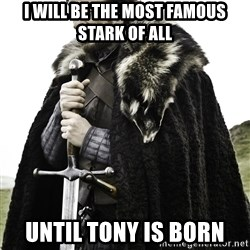 Ned Stark - I will be the most famous stark of all Until tony is born
