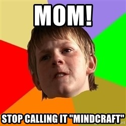 "Angry School Boy - Mom! Stop calling it ""mindcraft"""