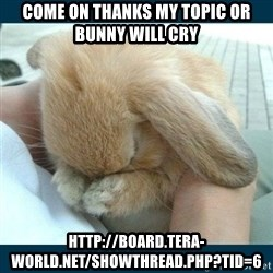 Bunny cry - come on thanks my topic or bunny will cry http://board.tera-world.net/showthread.php?tid=6
