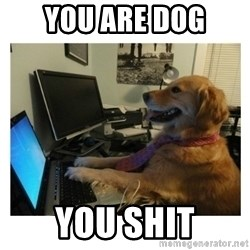 No Computer Idea Dog - you are dog you shit