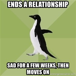 Socially Average Penguin - eNDs A RELATIONSHIP sad for a few weeks, then moves on