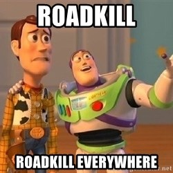 Consequences Toy Story - roadkill roadkill everywhere