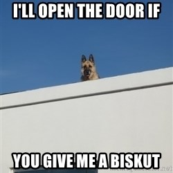 Roof Dog - I'LL OPEN THE DOOR IF YOU GIVE ME A BISKUT