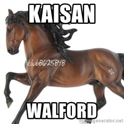 Typical horse model collector - KAISAN  WALFORD
