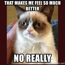 Tard the Grumpy Cat - That makes me feel so much better no really