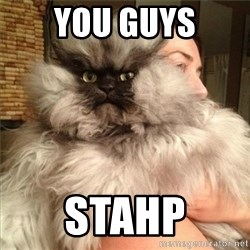 Colonel Meow - YOU GUYS STAHP