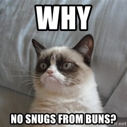 grumpy tard cat - Why no snugs from buns?
