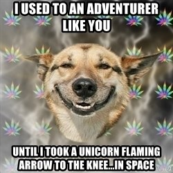 Stoner Dog - I used to an adventurer like you  until I took a unicorn flaming arrow to the knee...in space