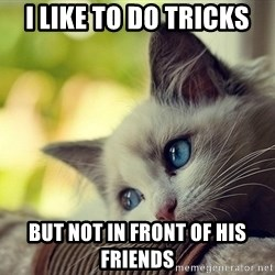First World Problems Cat - I like to do tricks but not in front of his friends