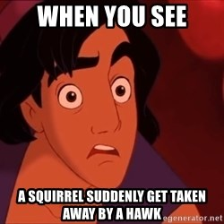 Horrified Aladdin - when you see a squirrel suddenly get taken away by a hawk