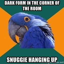 Paranoid Parrot - dark form in the corner of the room snuggie hanging up