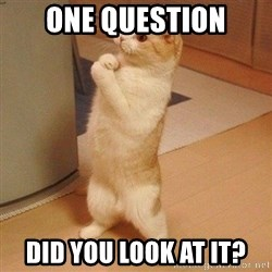 Sorry Cat - one question did you look at it?