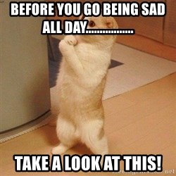 Sorry Cat - before you go being sad all day................. take a look at this!