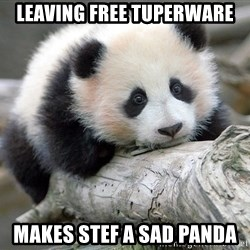 sad panda - leaving free tuperware makes stef a sad panda