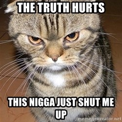 angry cat 2 - The Truth Hurts This Nigga Just Shut Me Up