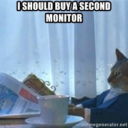 I should buy a cat - I SHOULD BUY A SECOND MONITOR