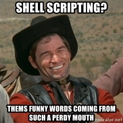 cowboy-coder - SHELL SCRIPTING? THEMS FUNNY WORDS COMING FROM SUCH A PERDY MOUTH