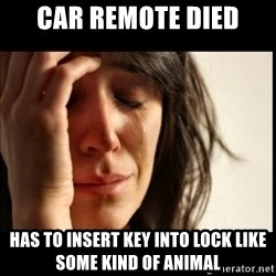 First World Problems - Car remote died Has to Insert key into lock like Some kind of animal