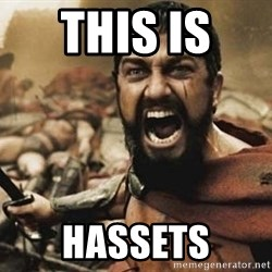 300 - THIS IS  HASSETS