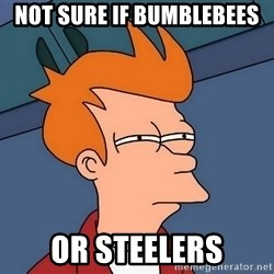 Futurama Fry - not sure if bumblebees or steelers