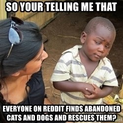 Skeptical 3rd World Kid - So yOUR TELLING ME THAT eVERYONE ON REDDIT FINDS ABANDONED CATS AND DOGS AND RESCUES THEM?