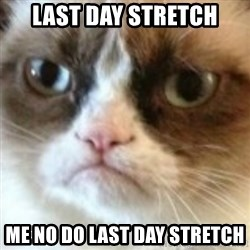 angry cat asshole - Last day Stretch Me no Do Last Day STretch