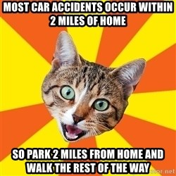 Bad Advice Cat - most car accidents occur within 2 miles of home so park 2 miles from home and walk the rest of the way