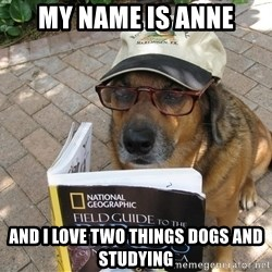 Dog Studying - My name is anne and i love two things dogs and studying