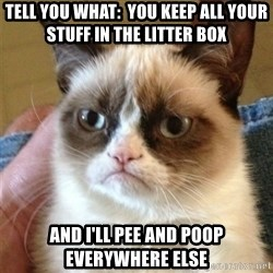 Grumpy Cat  - tell you what:  You keep all your stuff in the litter box and I'll pee and poop everywhere else