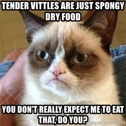 Grumpy Cat  - tender vittles are just spongy dry food you don't really expect me to eat that, do you?