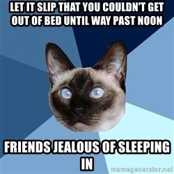 Chronic Illness Cat - Let it slip that you couldn't get out of bed until way past noon Friends jealous of sleeping in