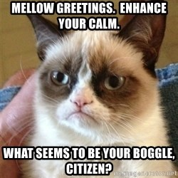 Grumpy Cat  - mellow greetings.  Enhance your calm. What seems to be your boggle, citizen?