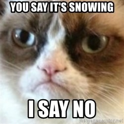 angry cat asshole - You saY IT'S SNOWING I SAY NO