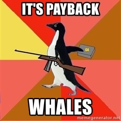 Socially Fed Up Penguin - IT'S PAYBACK WHALES
