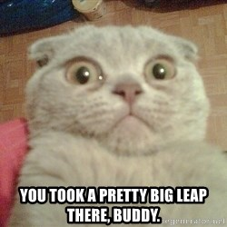 GEEZUS cat -  you took a pretty big leap there, buddy.