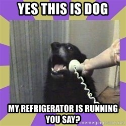 Yes, this is dog! - YES THIS IS DOG MY REFRIGERATOR IS RUNNING YOU SAY?