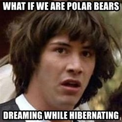 Conspiracy Keanu - What if we are polar bears dreaming while hibernating