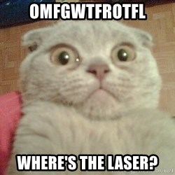 GEEZUS cat - OMFGWTFROTFL where's the laser?