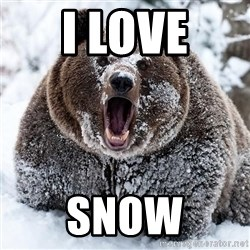 Clean Cocaine Bear - I LOVE SNOW