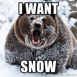 Clean Cocaine Bear - I WANT SNOW