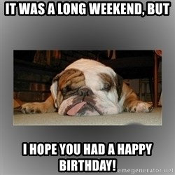 English Bulldog - it was a long weekend, but i hope you had a happy birthday!