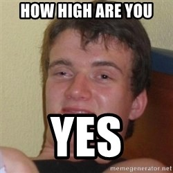 Really Stoned Guy - how high are you yes