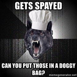 Insanity Wolf - gets spayed can you put those in a doggy bag?