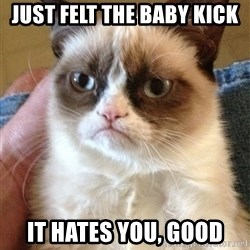 Grumpy Cat Face - Just felt the baby kick it hates you, good