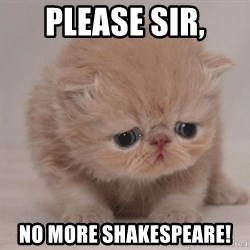 Sadcat - Please sir, No more shakespeare!