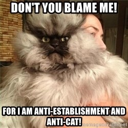 Colonel Meow - don't you blame me! for i am anti-establishment and anti-cat!