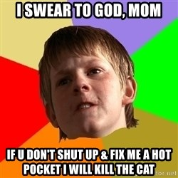 Angry School Boy - i swear to god, mom if u don't shut up & fix me a hot pocket i will kill the cat