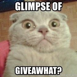GEEZUS cat - glimpse of giveawhat?