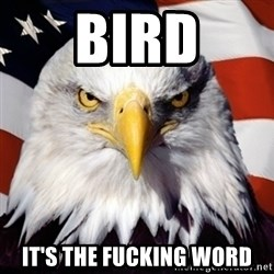 Freedom Eagle  - Bird it's the fucking word