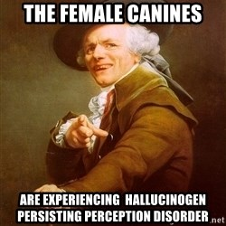 Joseph Ducreux - tHE FEMALE CANINES ARE EXPERIENCING  hallucinogen persisting perception disorder